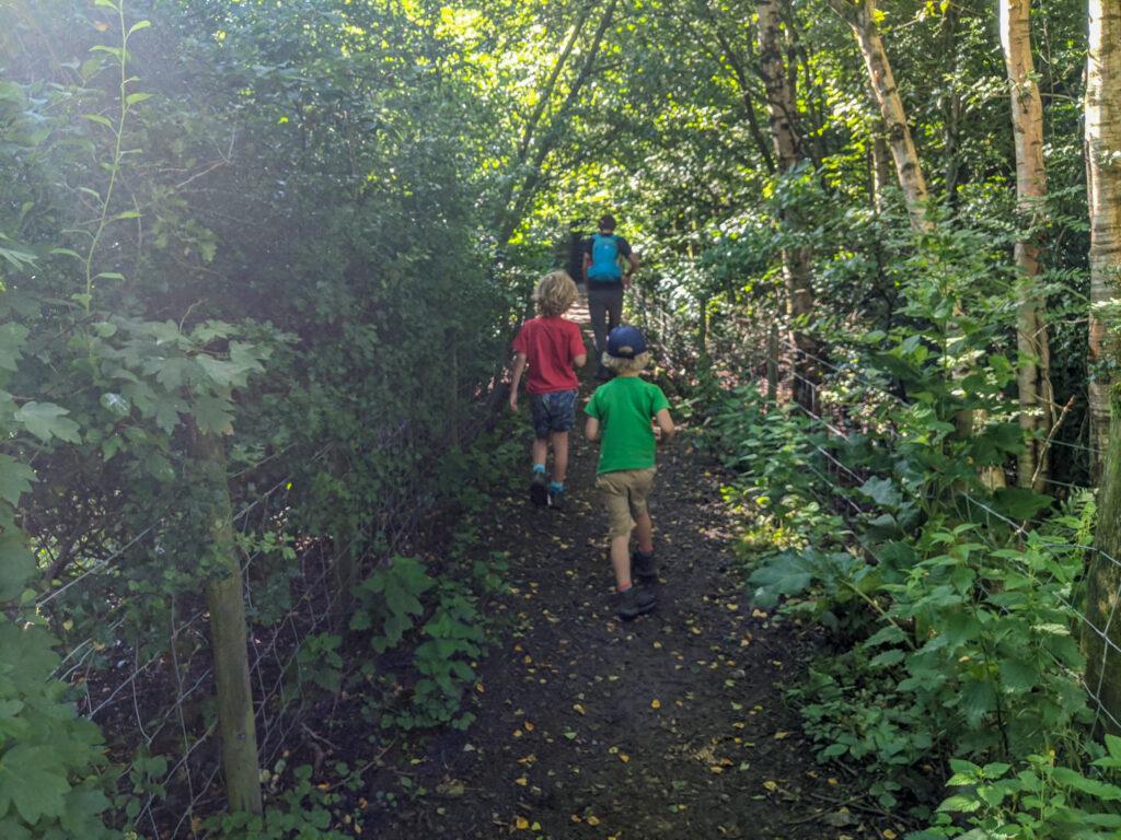 footpath through Hayfield campsite