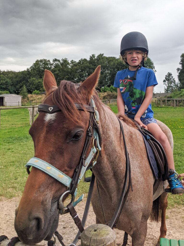 pony rides at Matlock Farm Park