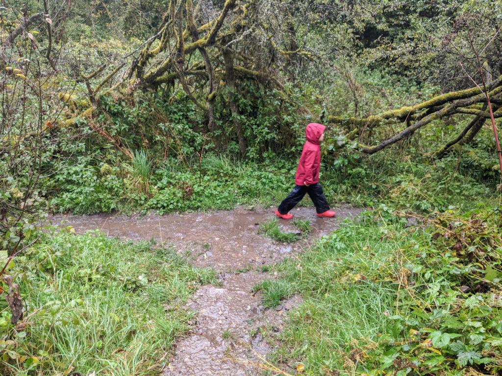 Cressbrook Dale walk
