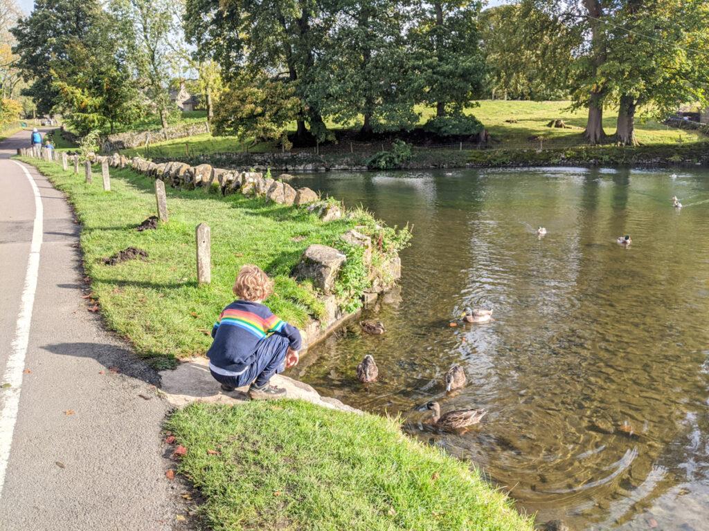 Tissington duck pond