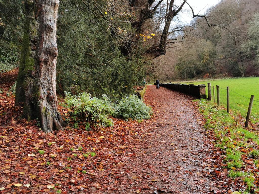 Ilam Park walk