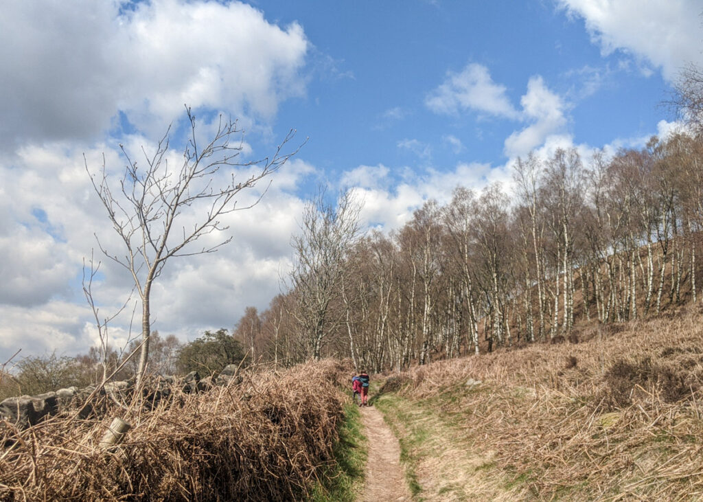 Birchen Edge walk