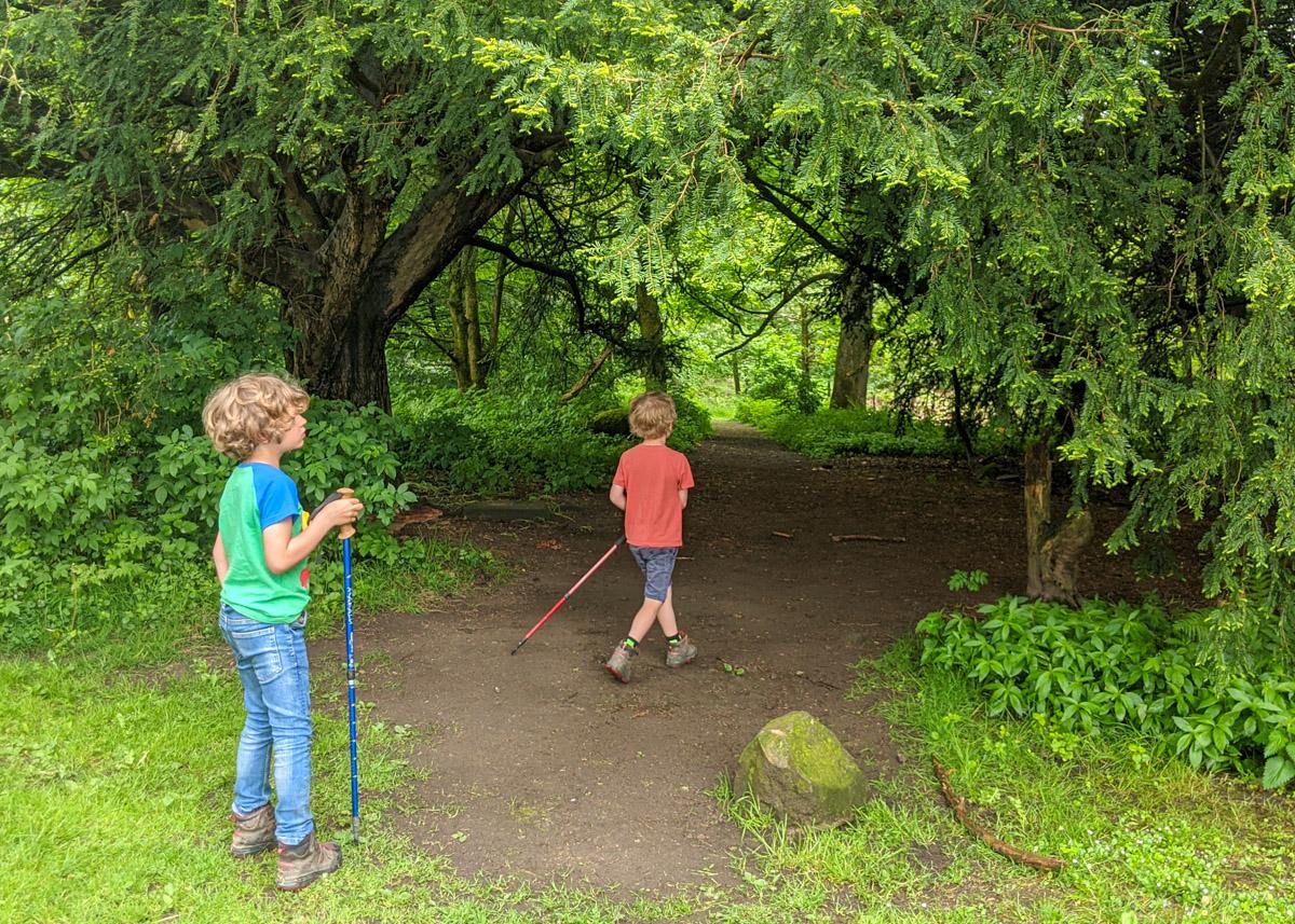 The BEST Peak District woodland walks