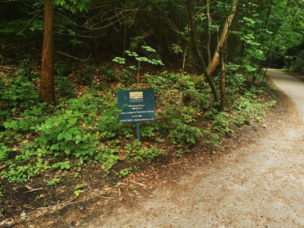 Stand Wood walk Chatsworth