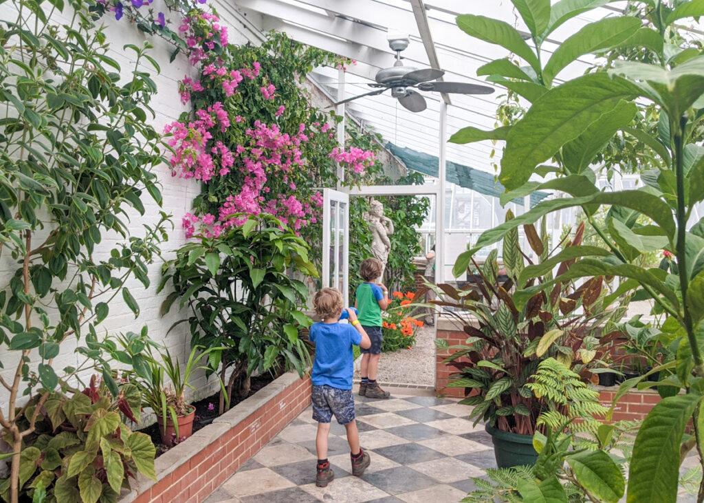 Greenhouse at Thornbridge Gardens