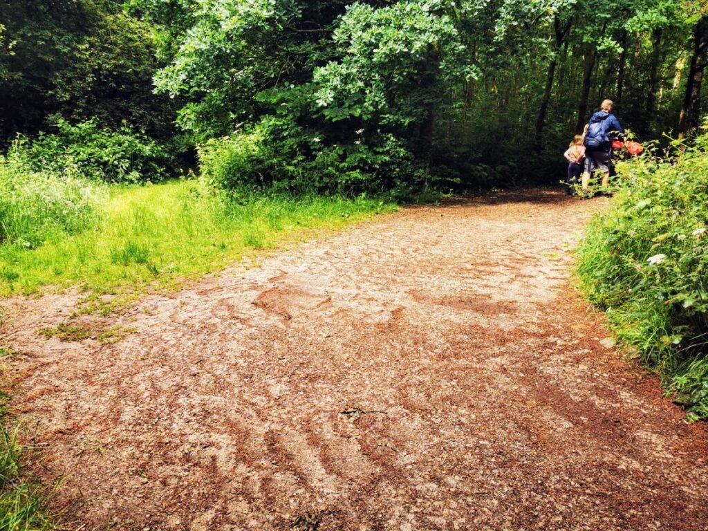 Tittesworth Reservoir walk